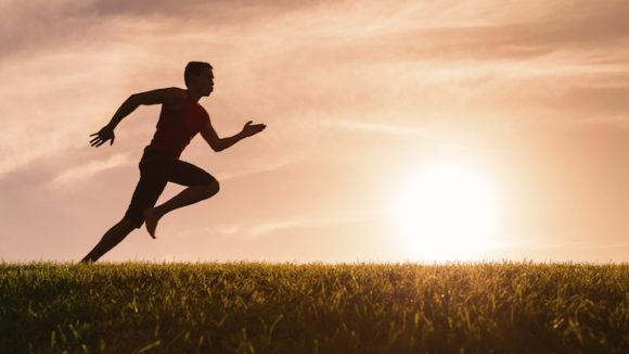 movement health matrix